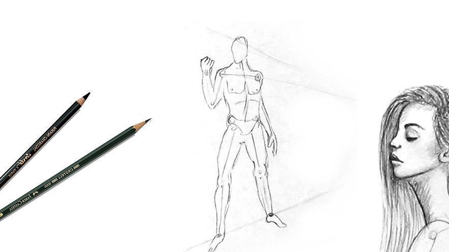 Figuren zeichnen - die Anatomie des menschlichen Körpers