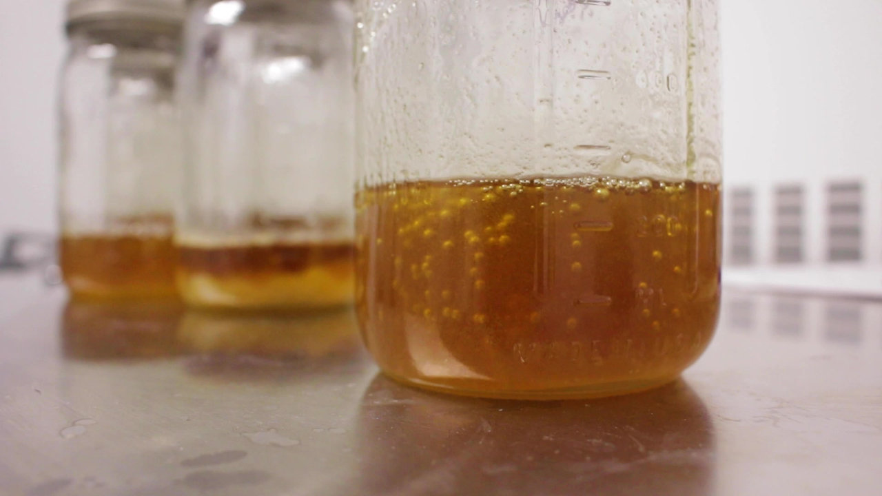 Full Spectrum vs. Distillate Extraction: What's the Difference?