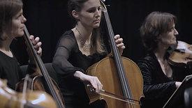 Symphony 7 - Beethoven - Anima Eterna Brugge - Jakob Lehmann