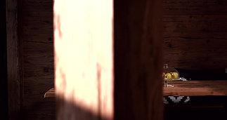 sun-wood-by-stainer-eine-der-innovativsten-und-nachhaltigsten-firmen-osterreichs