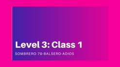 Level 3: class 1