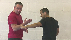 Steven Burton's Dim Mak Distance Training Programme - Month 3