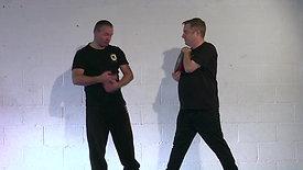 Steven Burton's Dim Mak Distance Training Programme - Month 7