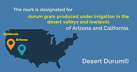Desert Durum