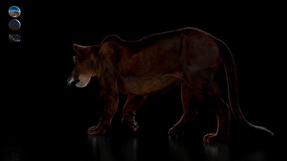 FurTool 0.8 - Lioness