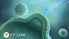 tyFlow ENDOCYTOSIS