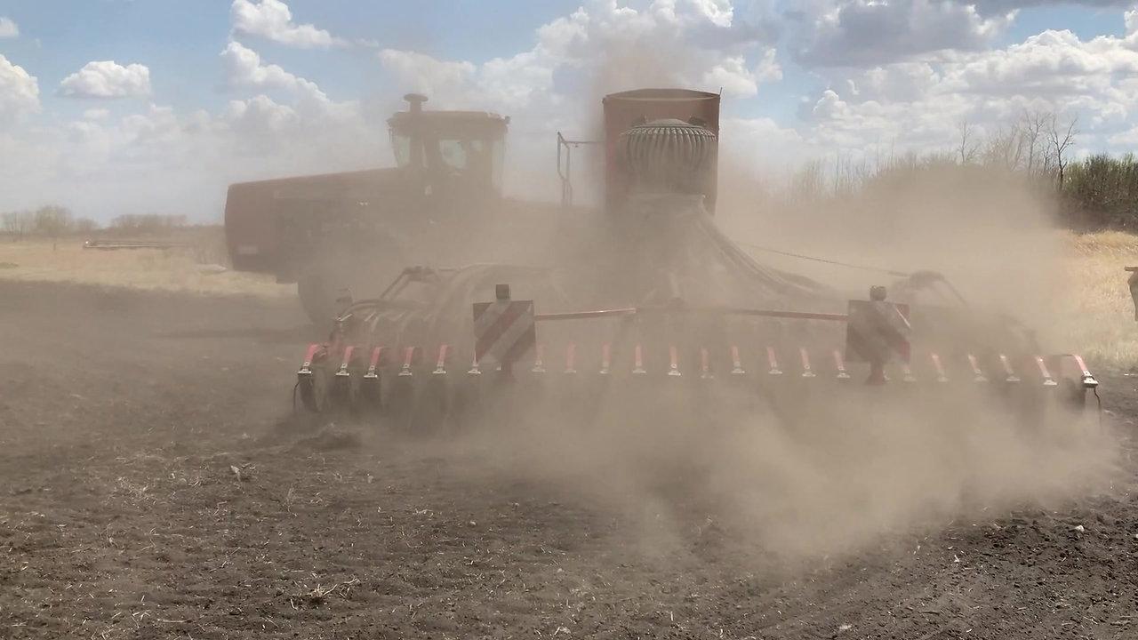 Alan McKenzie seeding wheat varieties on May 14, 2021