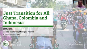 Webinar - A Just Transition For All. Dialogue with Developing Countries
