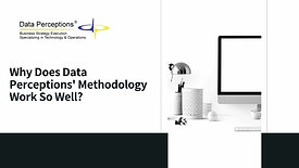 Why Data Perceptions' Methodology Works So Well?