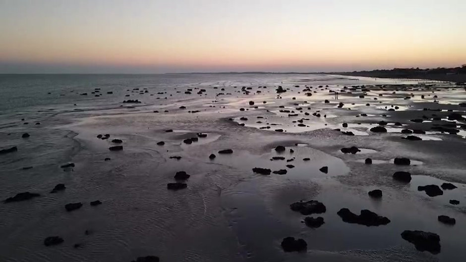 Videos of the beach