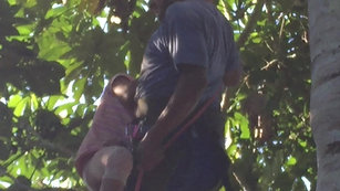 Miguel and daughter descend