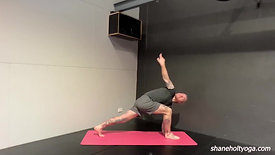 Signature Vinyasa V4 with Shane