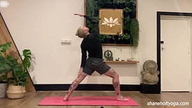 45 Power Vinyasa Flow with Shane 2