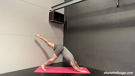 Signature Vinyasa V5 with Shane