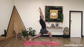45 Power Vinyasa Flow with Shane 4