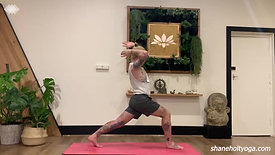 45 Power Vinyasa Flow with Shane 3