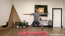 45 Power Vinyasa Flow with Shane 5