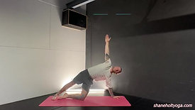 Basic Vinyasa with Shane