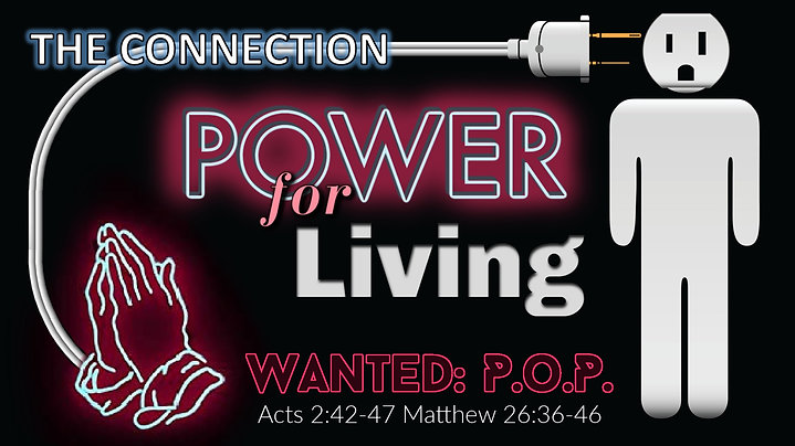 Wanted: P.o.P. - Power for LIving: The Connection
