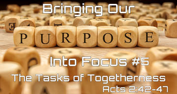 Bringing Our Purpose into Focus #5 - The Task of Togetherness