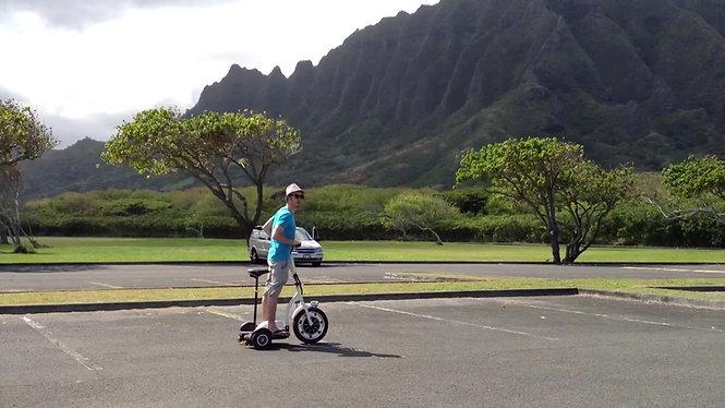Born in Hawaii Born for Fun