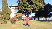Wudang Taichi 13Form@Swiss (Jan. 2017) performed by dr. YingZhang