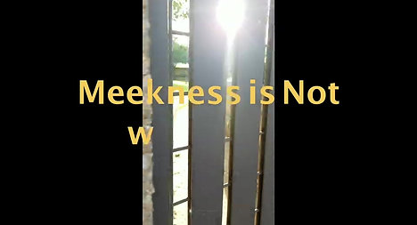 Day 35: Meekness