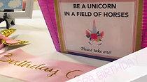 Anna's Unicorn Spa Birthday
