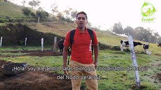 """""""Turismo Acatlán, Veracruz"""""""