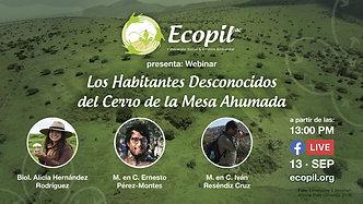 #Webinar: Los Habitantes Desconocidos del Cerro de la Mesa Ahumada