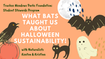 What Bats Taught Us About Halloween Sustainability!
