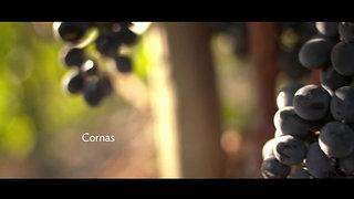 DCC- Paysages 01