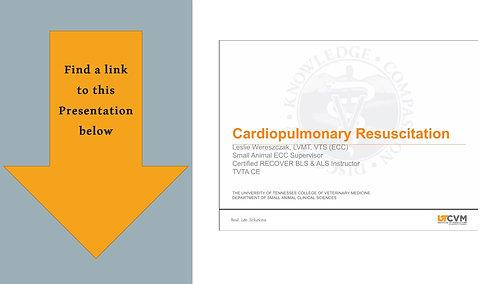 Cardiopulmonary Resuscitation- Video link below