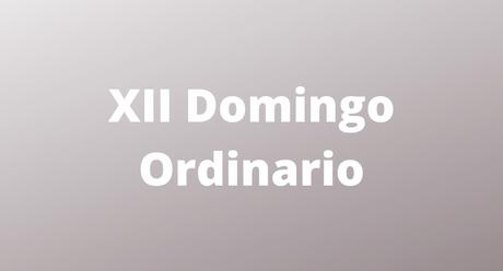 XII Domingo Ordinario - St Francis of Assisi Castle Rock, CO
