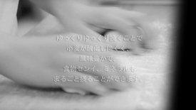 ベーシックプラン15000円見本02