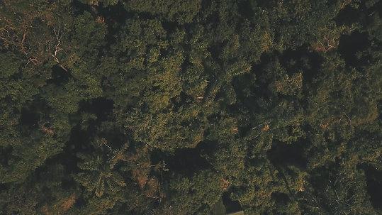 Costa da Lagoa, Florianópolis (0:54)