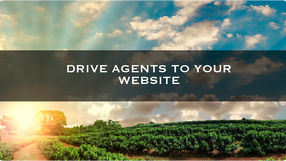 Drive Agents to Your Website