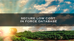 Secure Low Cost In Force Database
