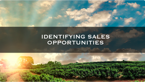 Identifying Sales Opportunities
