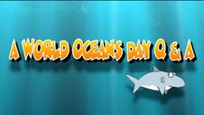 MERR World Oceans Day 2020
