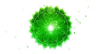 SPIRE Lotus Green