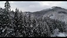 Hyndrone山形