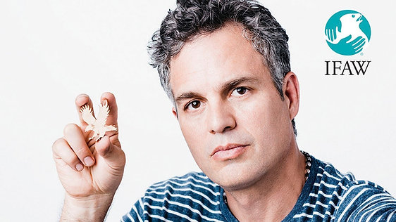 One Act for All - Mark Ruffalo