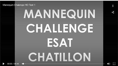 Mannequin Challenge ESAT Chatillon