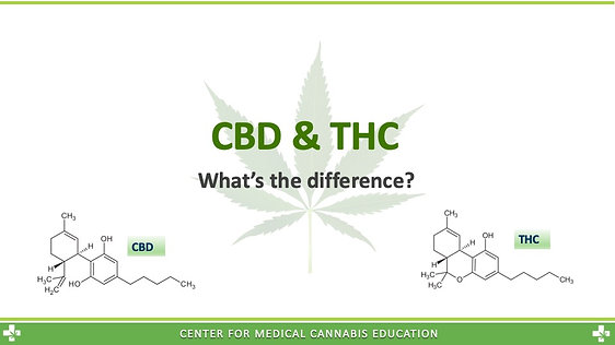 THC & CBD - What's the difference?