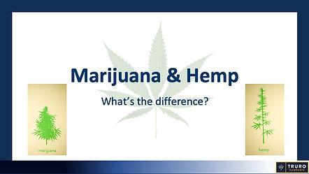 Marijuana & Hemp