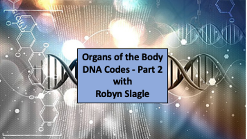 Organs of the Body DNA Codes - Part 2