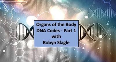 Organs of the Body DNA Codes Part 1