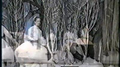 Basi Legani - Key to the Garden