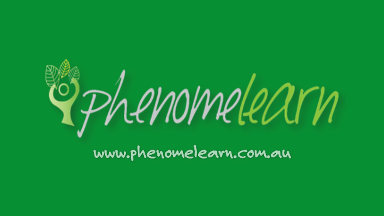 A little of what we do at Phenomelearn...